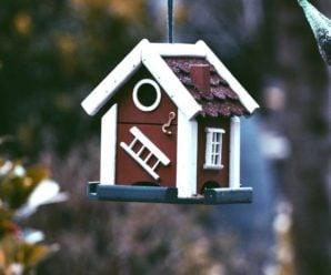 Стоит ли обращаться в агентство недвижимости для аренды жилья